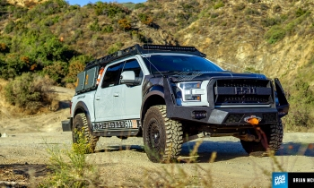 Stay Frosty: The Tactical Raptor That's Up For Anything